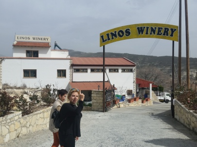 Wine tasting stop in the Troodos Mountains