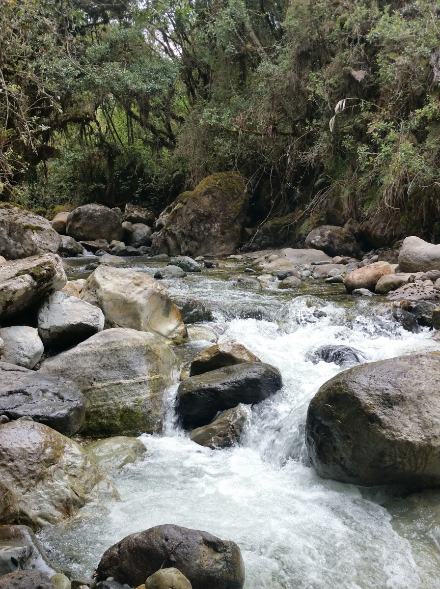 Cuenca's clean water is priceless. And vulnerable.